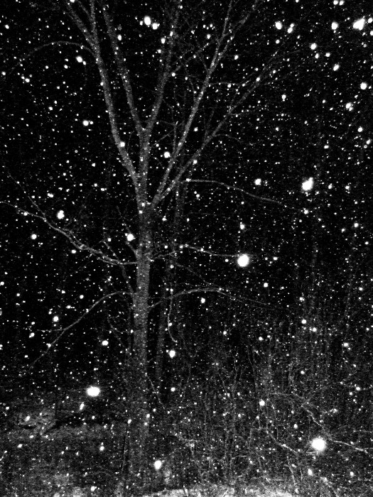 photoblog image night snow