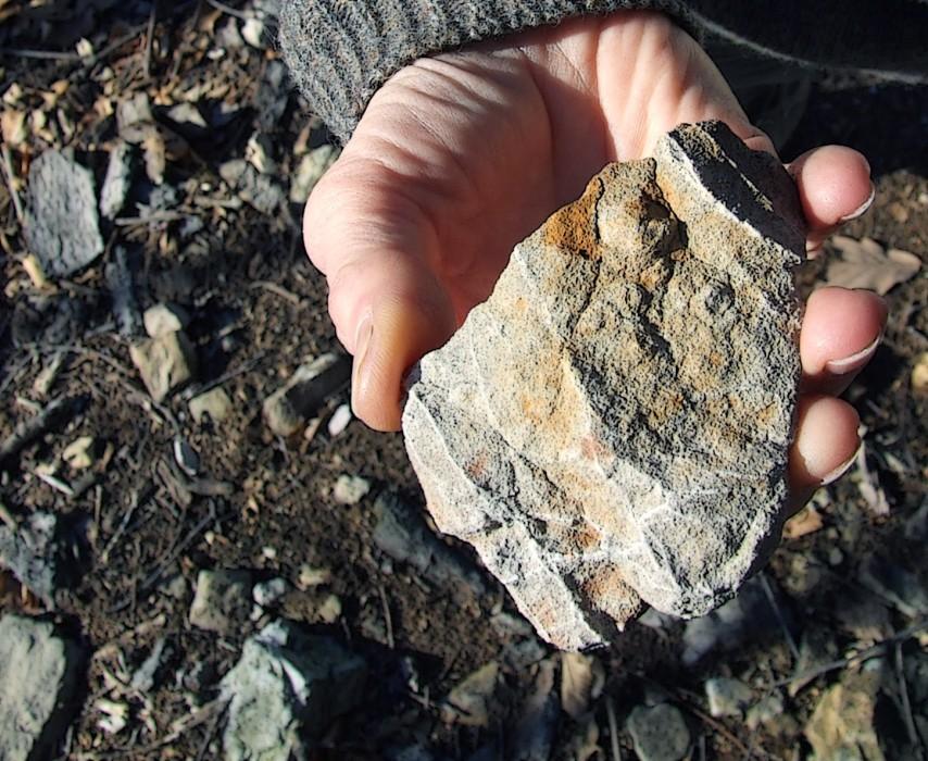 photoblog image this rock