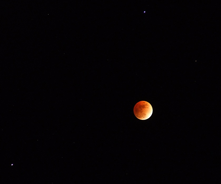 photoblog image eclipsed moon with Saturn and Regulus